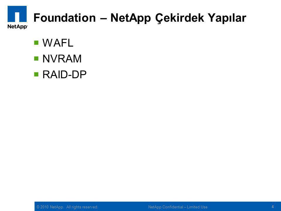 Foundation – NetApp Çekirdek Yapılar