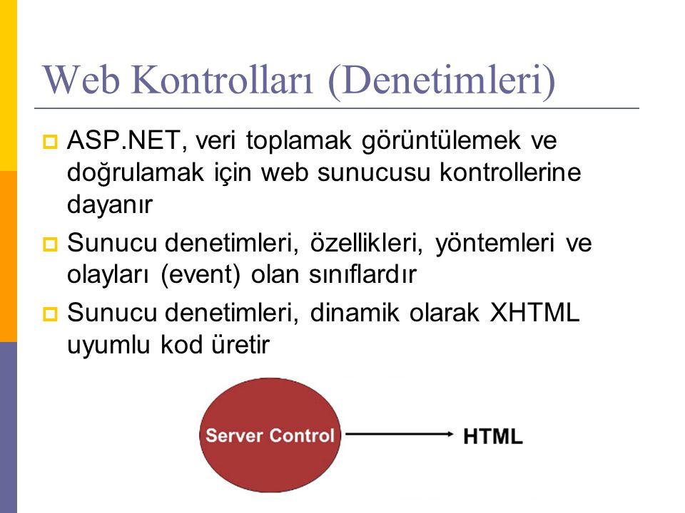 Web Kontrolları (Denetimleri)