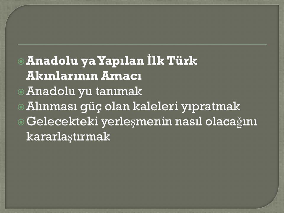 Anadolu ya Yapılan İlk Türk Akınlarının Amacı