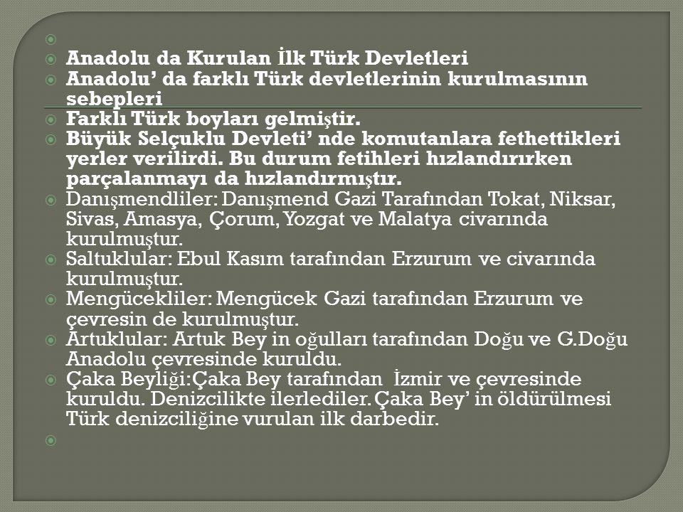 Anadolu da Kurulan İlk Türk Devletleri. Anadolu' da farklı Türk devletlerinin kurulmasının sebepleri.