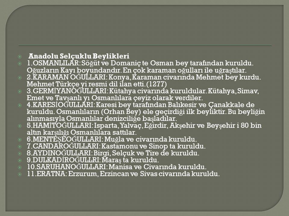Anadolu Selçuklu Beylikleri