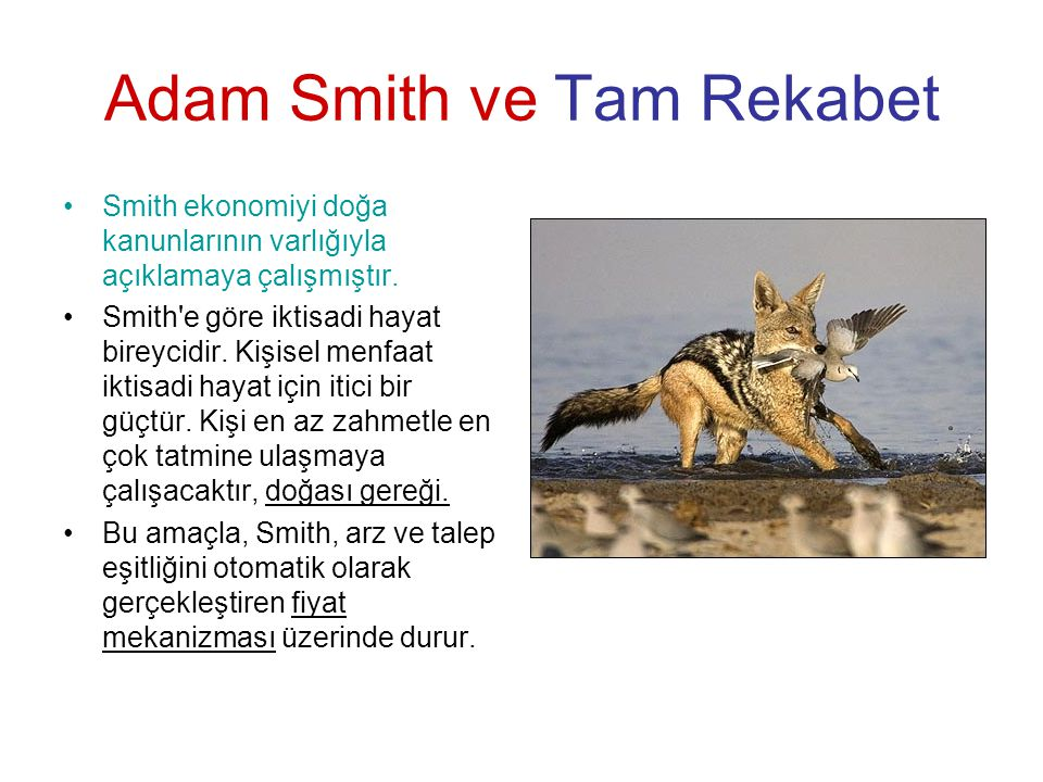 Adam Smith ve Tam Rekabet
