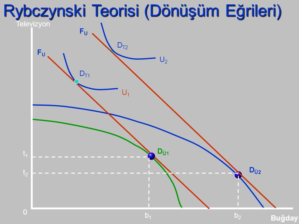 Rybczynski Teorisi (Dönüşüm Eğrileri)