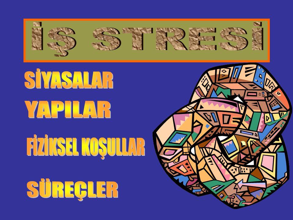 İŞ STRESİ SİYASALAR YAPILAR FİZİKSEL KOŞULLAR SÜREÇLER