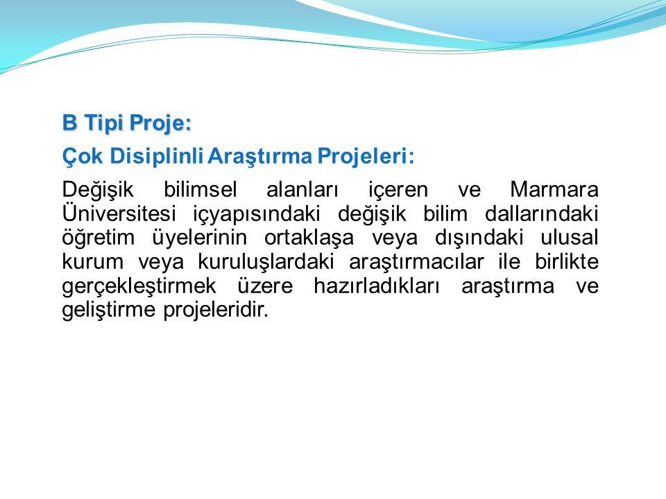 B Tipi Proje: Çok Disiplinli Araştırma Projeleri: