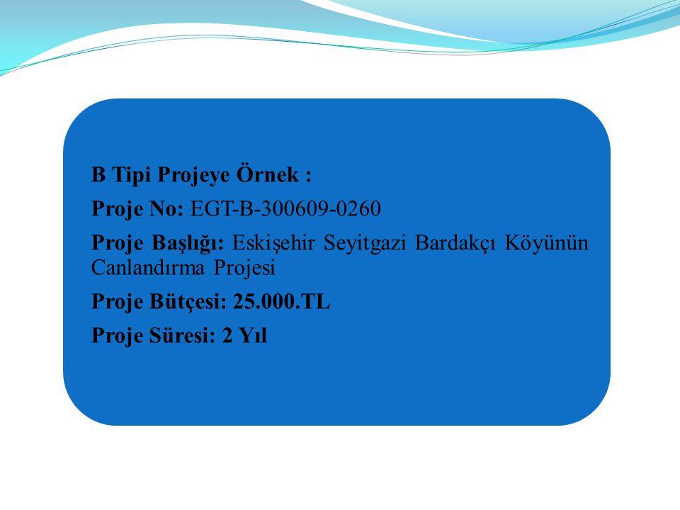 B Tipi Projeye Örnek : Proje No: EGT-B-300609-0260. Proje Başlığı: Eskişehir Seyitgazi Bardakçı Köyünün Canlandırma Projesi.