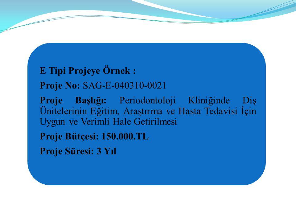 E Tipi Projeye Örnek : Proje No: SAG-E-040310-0021.