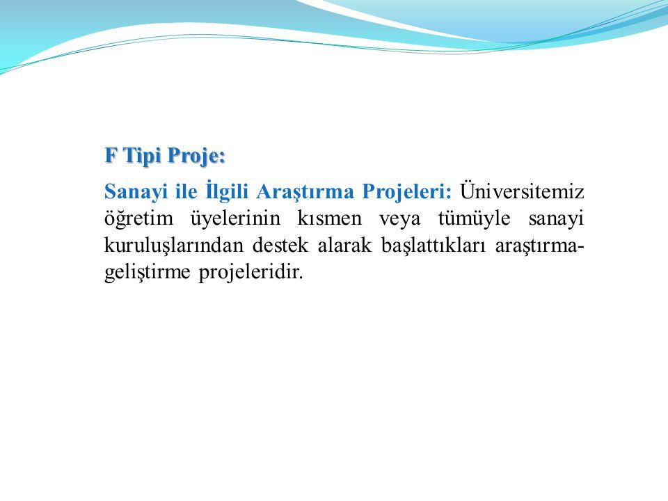 F Tipi Proje: