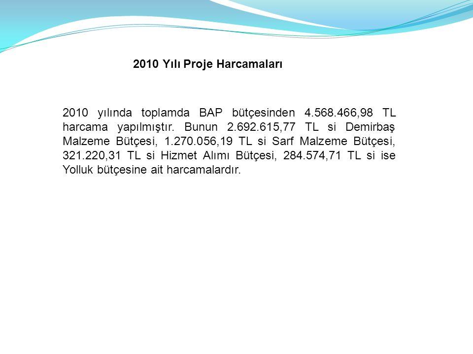 2010 Yılı Proje Harcamaları