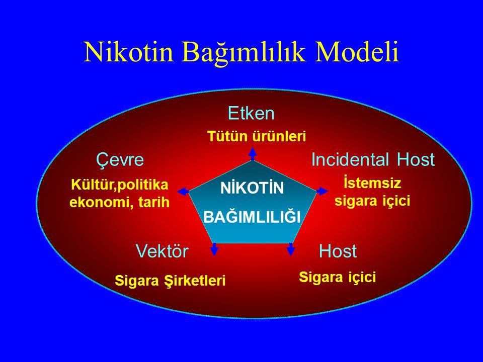 Nikotin Bağımlılık Modeli