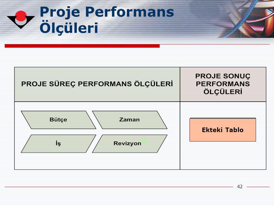 Proje Performans Ölçüleri