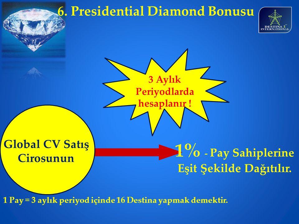 1% - Pay Sahiplerine Eşit Şekilde Dağıtılır.