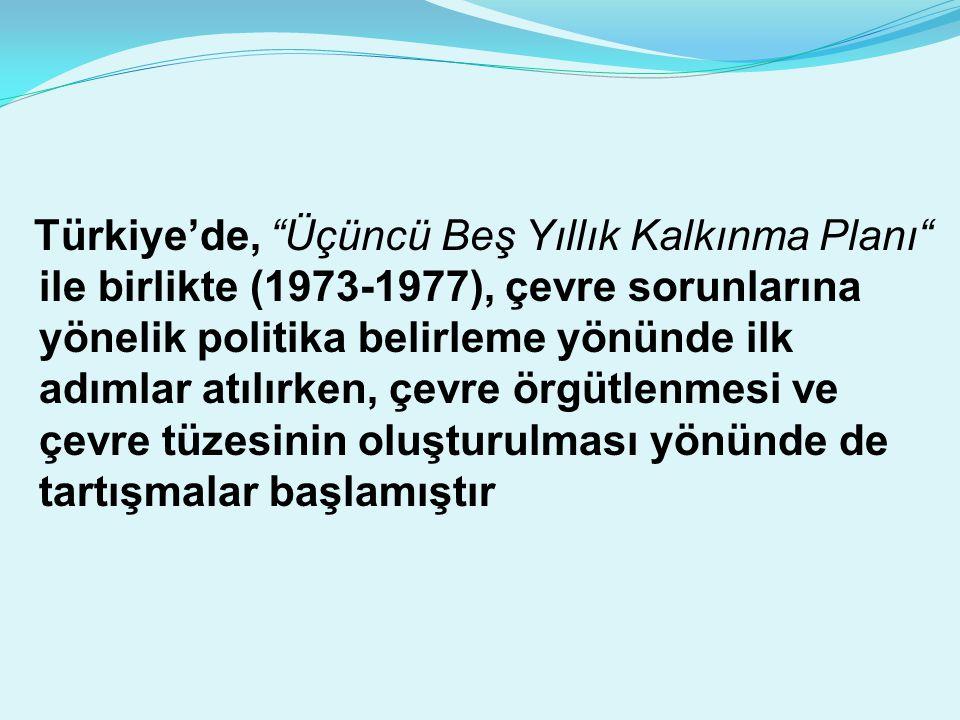Türkiye'de, Üçüncü Beş Yıllık Kalkınma Planı ile birlikte (1973-1977), çevre sorunlarına yönelik politika belirleme yönünde ilk adımlar atılırken, çevre örgütlenmesi ve çevre tüzesinin oluşturulması yönünde de tartışmalar başlamıştır