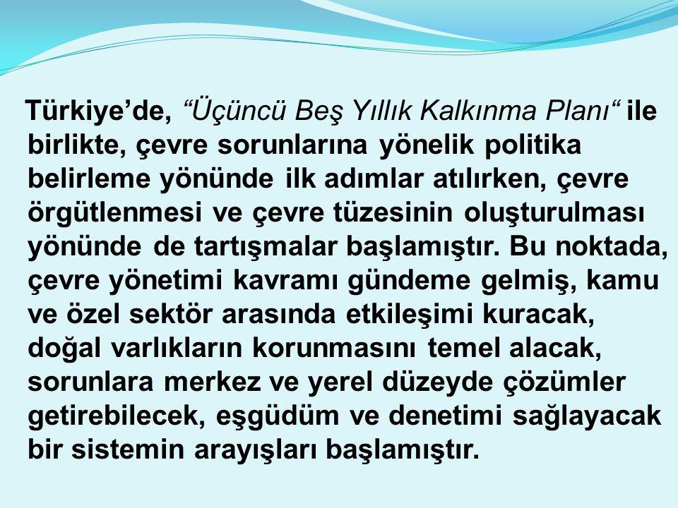 Türkiye'de, Üçüncü Beş Yıllık Kalkınma Planı ile birlikte, çevre sorunlarına yönelik politika belirleme yönünde ilk adımlar atılırken, çevre örgütlenmesi ve çevre tüzesinin oluşturulması yönünde de tartışmalar başlamıştır.