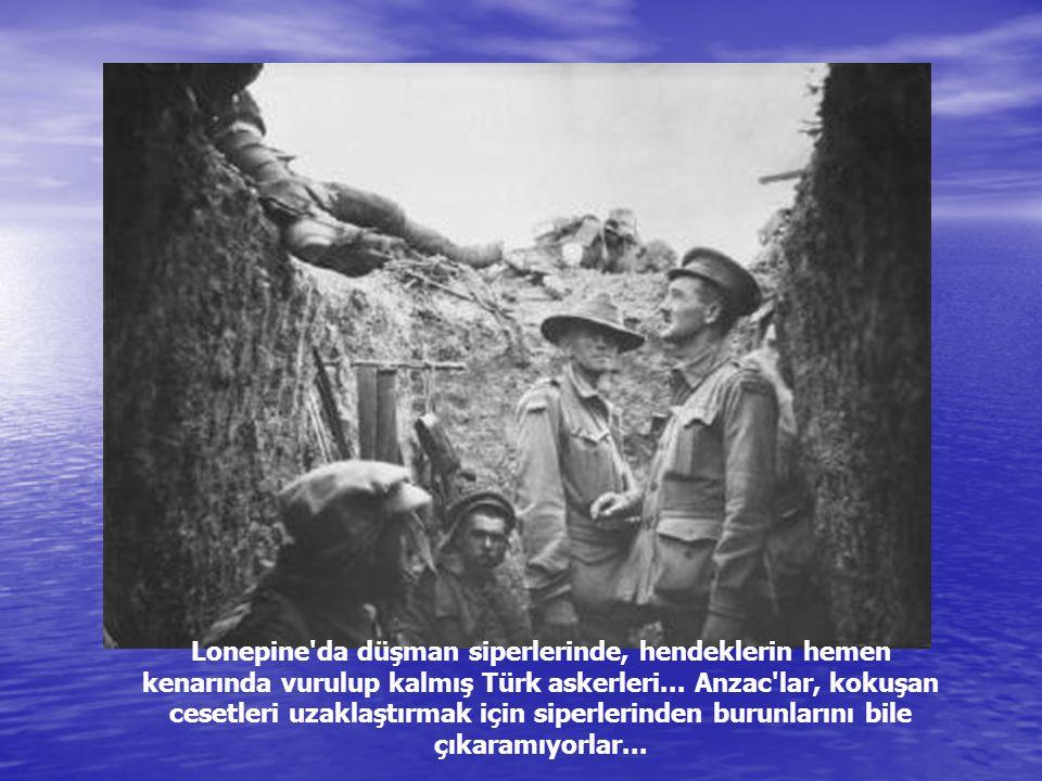 Lonepine da düşman siperlerinde, hendeklerin hemen kenarında vurulup kalmış Türk askerleri...