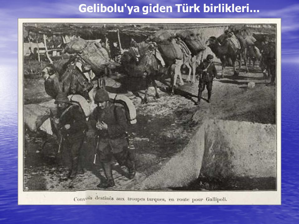 Gelibolu ya giden Türk birlikleri...