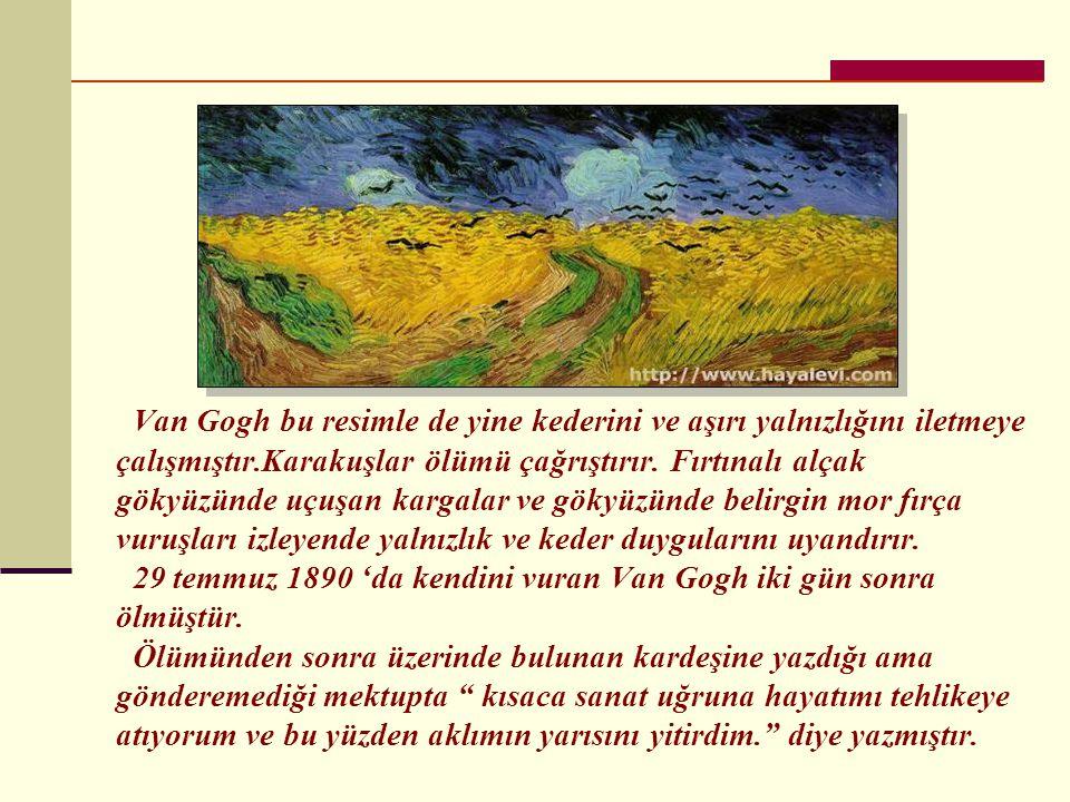 Van Gogh bu resimle de yine kederini ve aşırı yalnızlığını iletmeye çalışmıştır.Karakuşlar ölümü çağrıştırır.