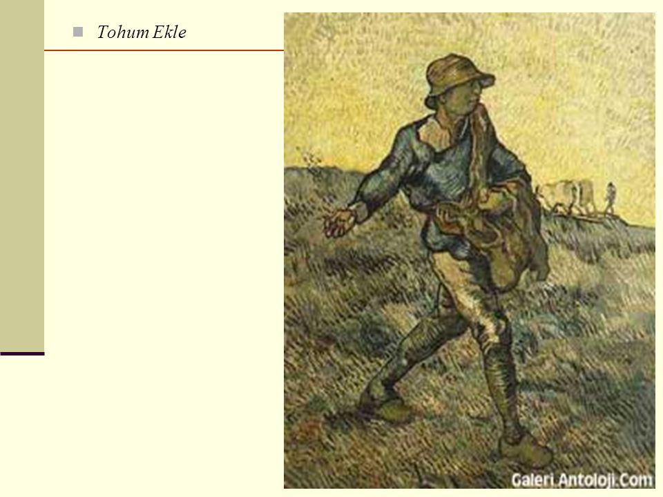 Tohum Ekle