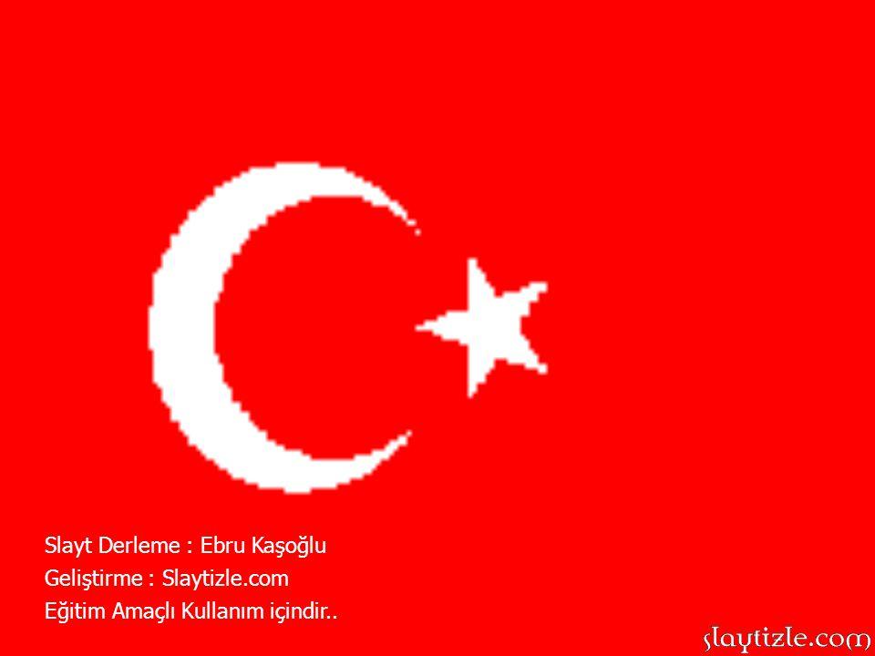 Slayt Derleme : Ebru Kaşoğlu