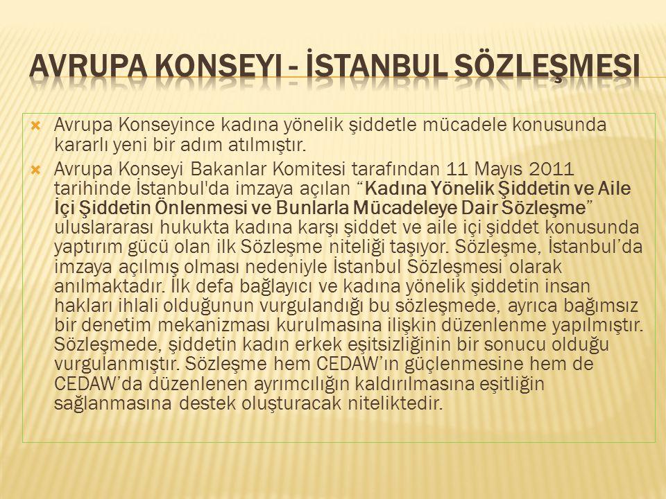 Avrupa Konseyi - İstanbul Sözleşmesi
