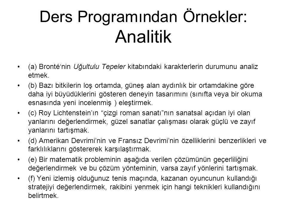 Ders Programından Örnekler: Analitik