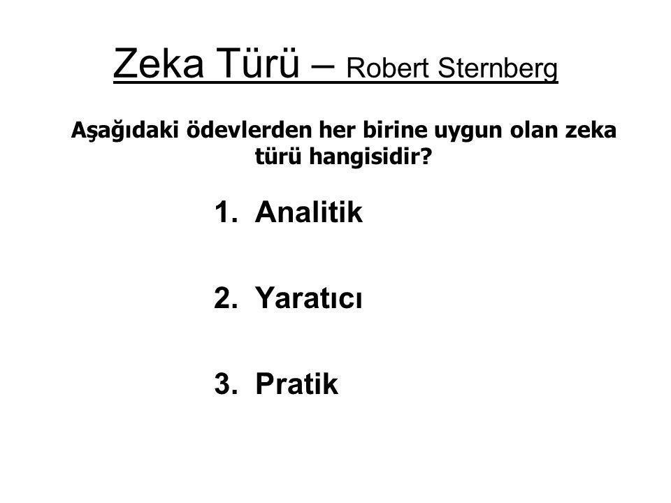 Zeka Türü – Robert Sternberg