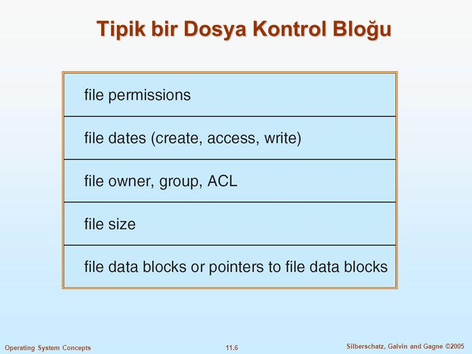 Tipik bir Dosya Kontrol Bloğu