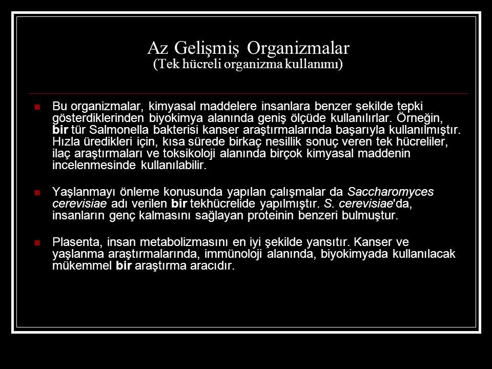 Az Gelişmiş Organizmalar (Tek hücreli organizma kullanımı)