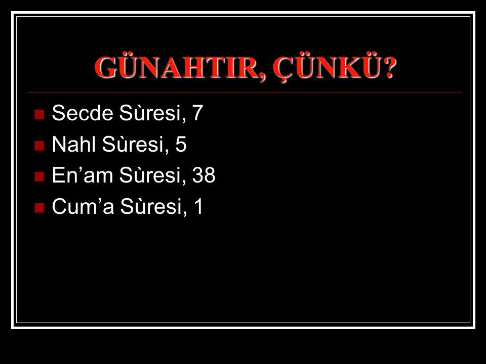 GÜNAHTIR, ÇÜNKÜ Secde Sùresi, 7 Nahl Sùresi, 5 En'am Sùresi, 38