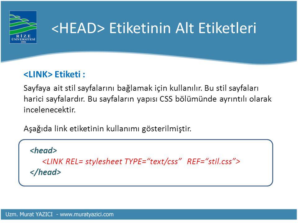 <HEAD> Etiketinin Alt Etiketleri