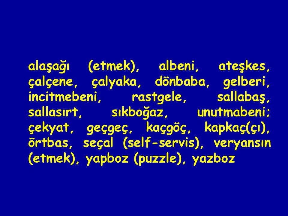 alaşağı (etmek), albeni, ateşkes, çalçene, çalyaka, dönbaba, gelberi, incitmebeni, rastgele, sallabaş, sallasırt, sıkboğaz, unutmabeni; çekyat, geçgeç, kaçgöç, kapkaç(çı), örtbas, seçal (self-servis), veryansın (etmek), yapboz (puzzle), yazboz