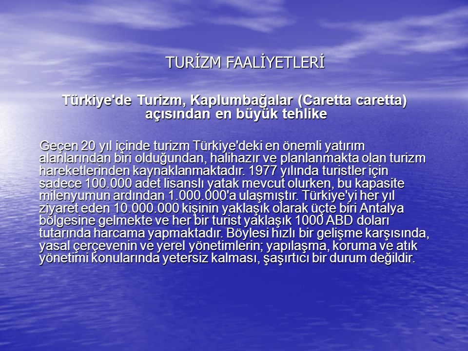 TURİZM FAALİYETLERİ Türkiye de Turizm, Kaplumbağalar (Caretta caretta) açısından en büyük tehlike.