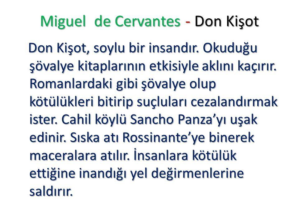 Miguel de Cervantes - Don Kişot