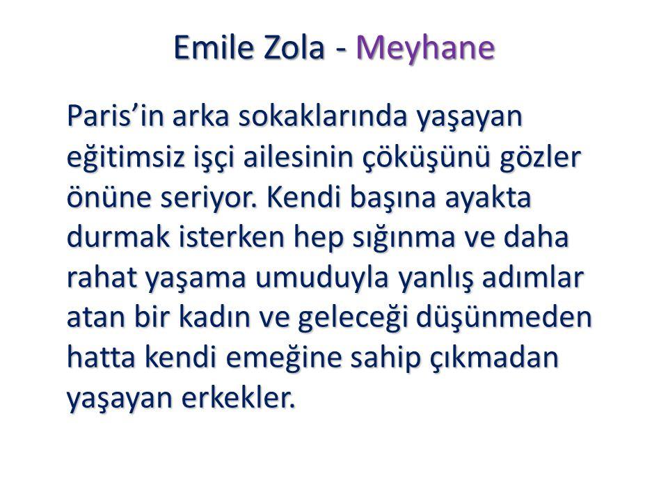 Emile Zola - Meyhane