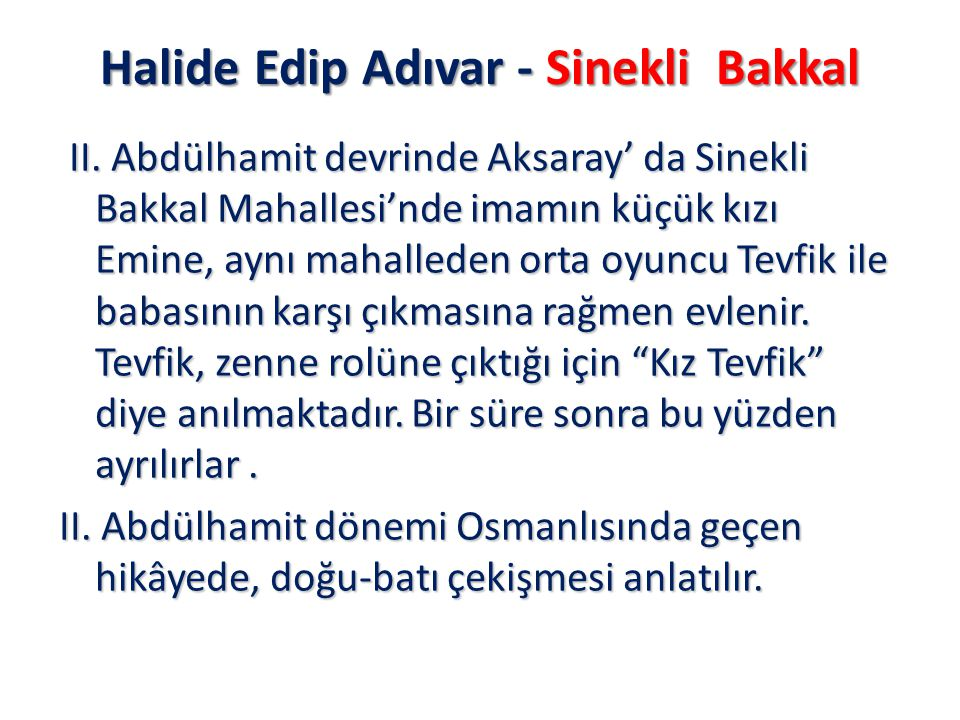 Halide Edip Adıvar - Sinekli Bakkal