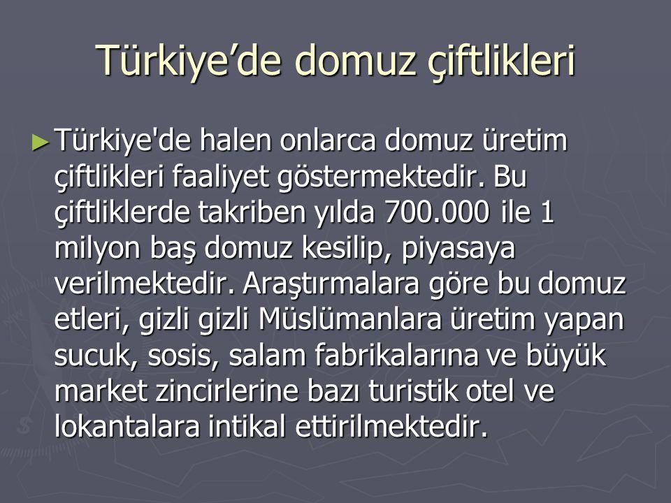 Türkiye'de domuz çiftlikleri