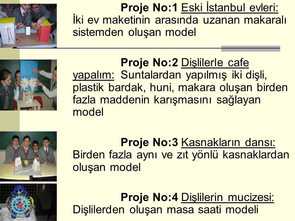 Proje No:1 Eski İstanbul evleri: İki ev maketinin arasında uzanan makaralı sistemden oluşan model