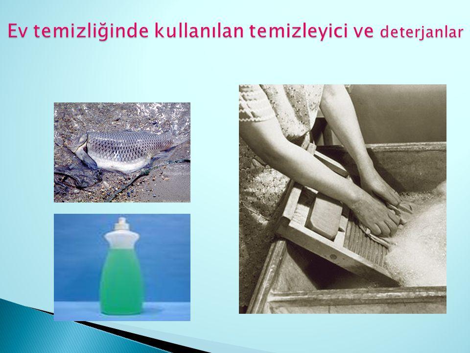Ev temizliğinde kullanılan temizleyici ve deterjanlar