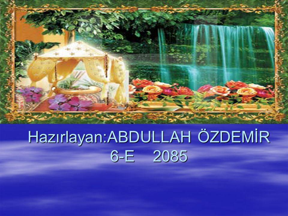 Hazırlayan:ABDULLAH ÖZDEMİR 6-E 2085