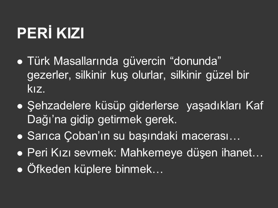 PERİ KIZI Türk Masallarında güvercin donunda gezerler, silkinir kuş olurlar, silkinir güzel bir kız.