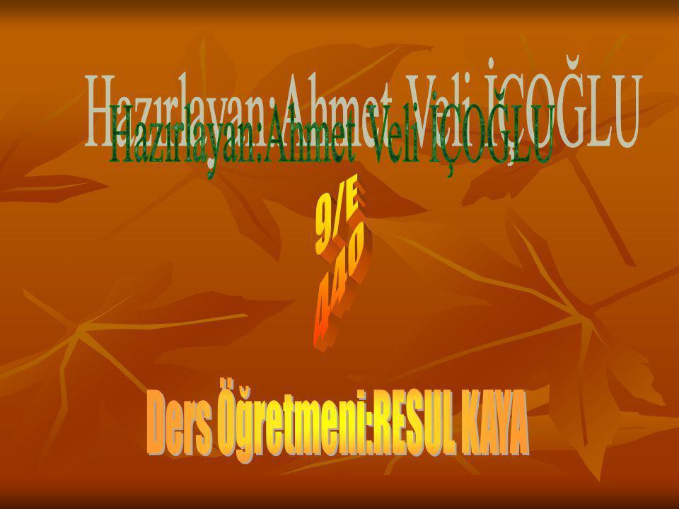Hazırlayan:Ahmet Veli İÇOĞLU