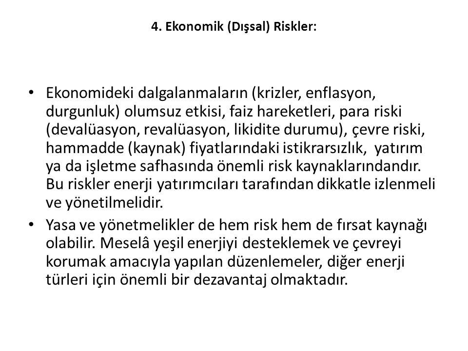 4. Ekonomik (Dışsal) Riskler: