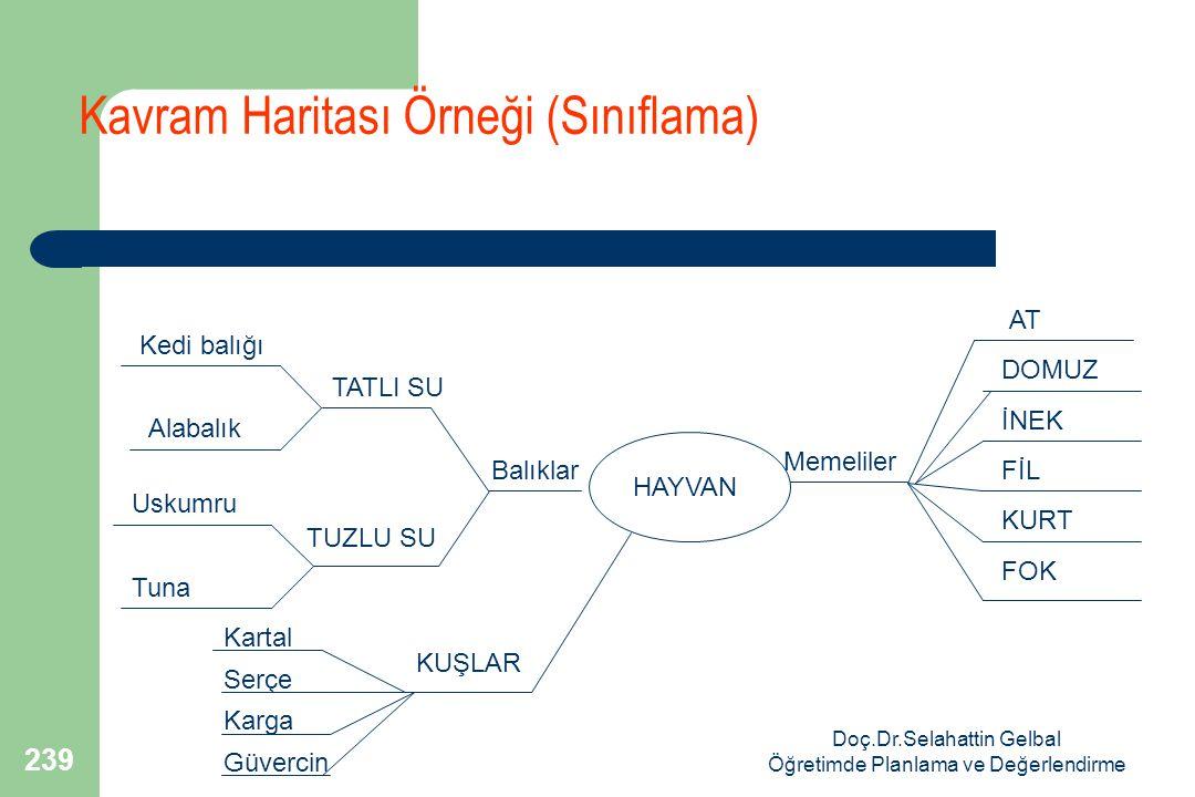 Kavram Haritası Örneği (Sınıflama)