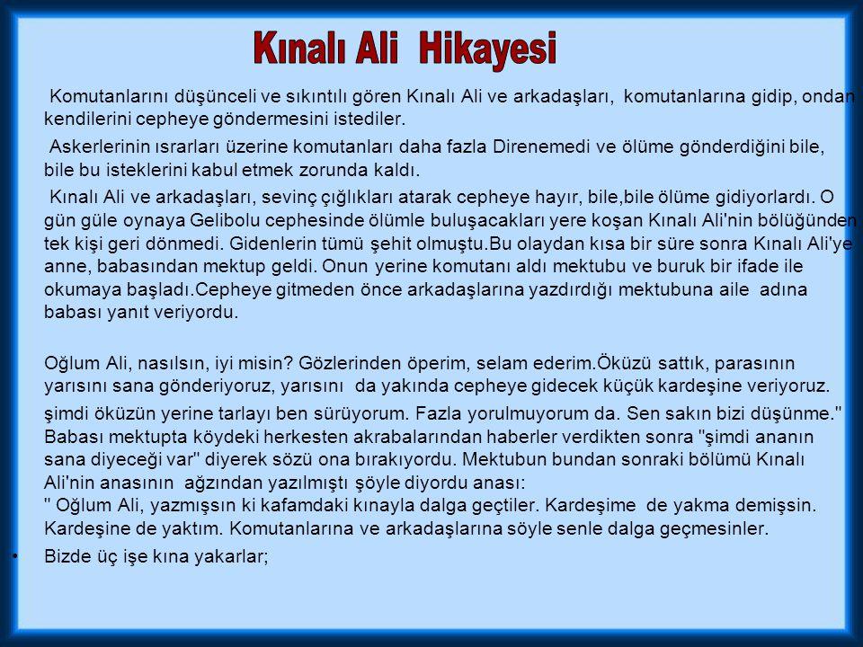 Kınalı Ali Hikayesi