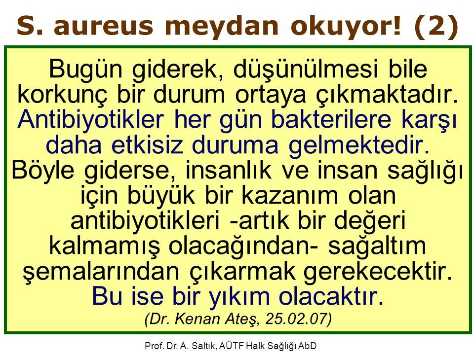 S. aureus meydan okuyor! (2)