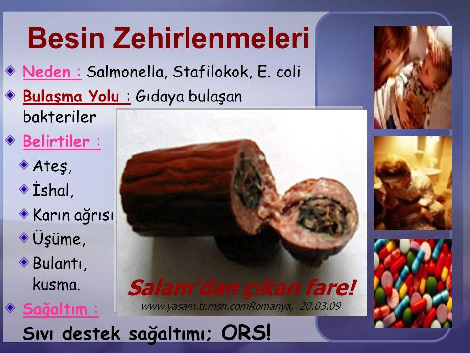 Besin Zehirlenmeleri Neden : Salmonella, Stafilokok, E. coli. Bulaşma Yolu : Gıdaya bulaşan bakteriler.