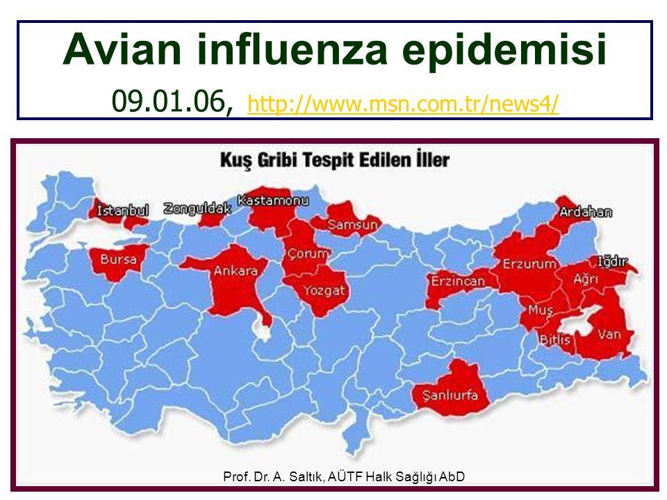 Avian influenza epidemisi 09.01.06, http://www.msn.com.tr/news4/