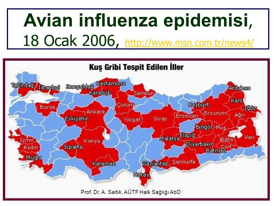 Avian influenza epidemisi, 18 Ocak 2006, http://www.msn.com.tr/news4/