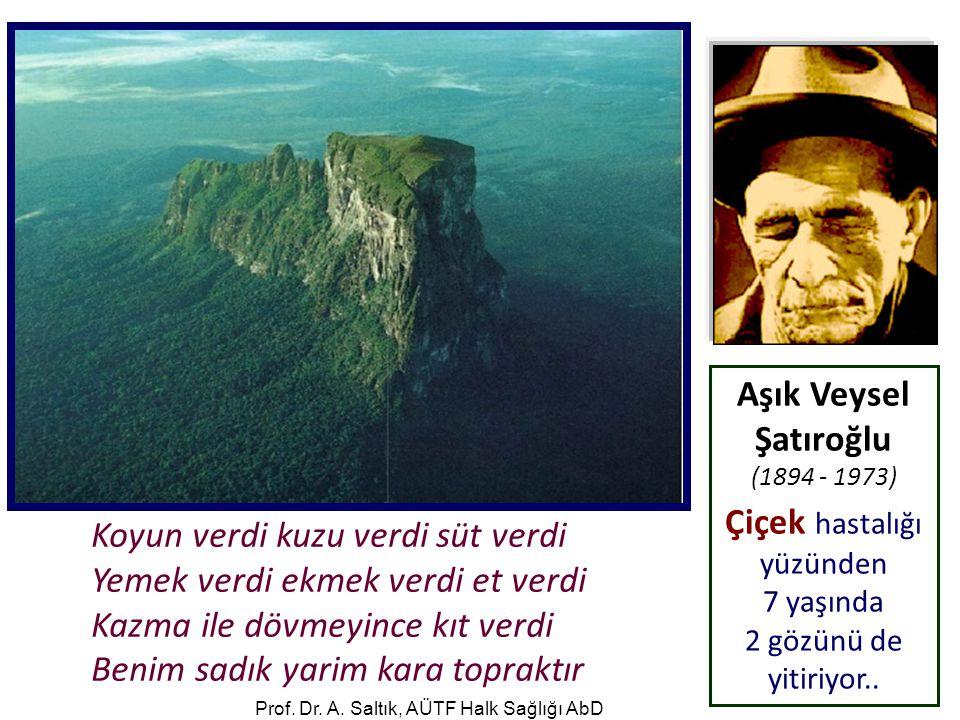 Aşık Veysel Şatıroğlu (1894 - 1973)