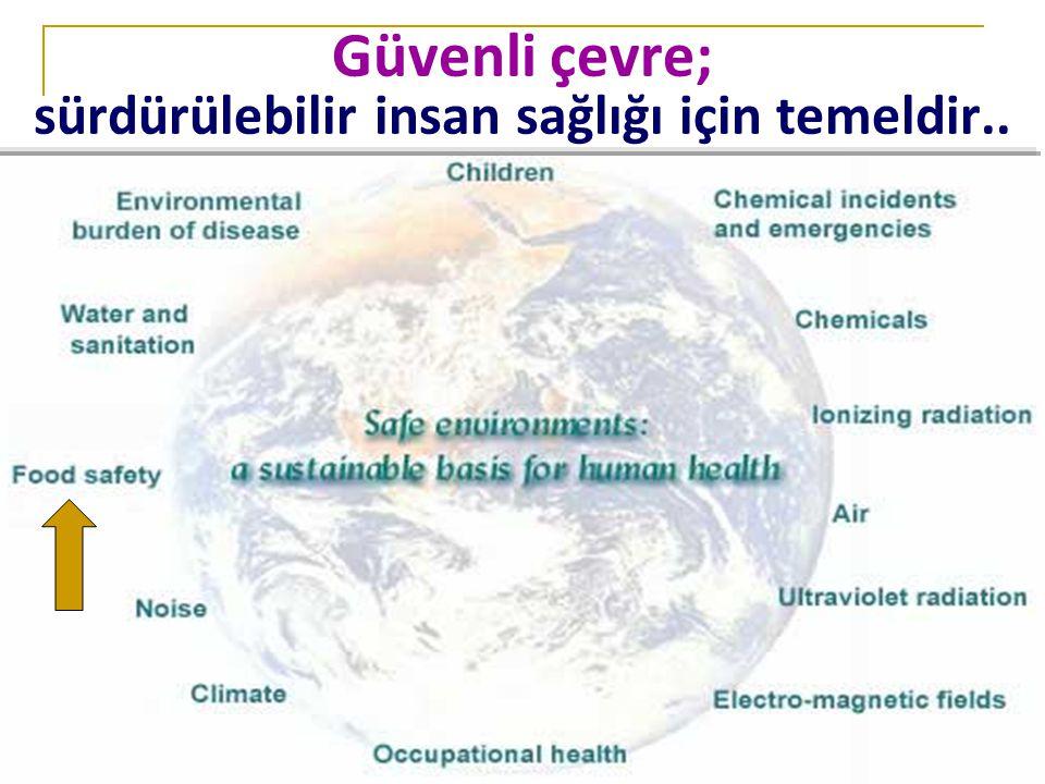 Güvenli çevre; sürdürülebilir insan sağlığı için temeldir..